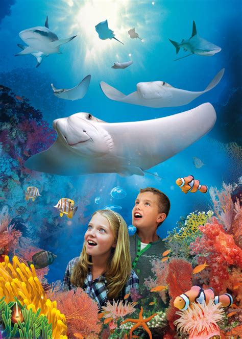 Get free tickets for Sea Life in Bray – only with the
